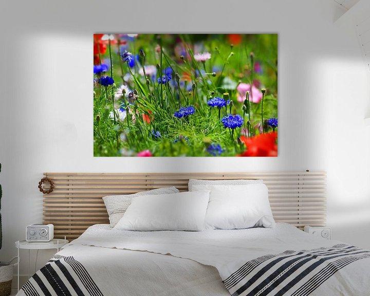 Sfeerimpressie: bloemenweide van fotoping