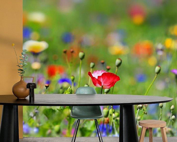 Impression: prairie de fleurs sur fotoping