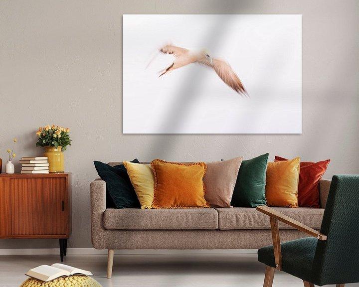 Beispiel: Ein abstrakter Eindruck von einem Gannet im Flug 8 von Danny Budts