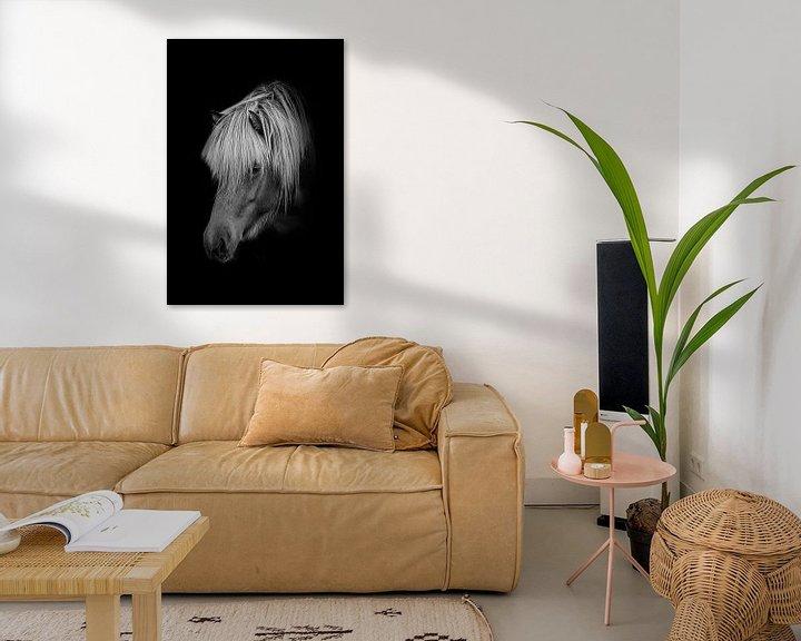 Sfeerimpressie: Pony in zwart wit met zwarte achtergrond van Maria-Maaike Dijkstra