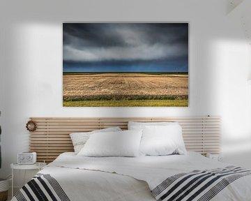 Landbouwgrond in  de Westhoek van Friesland van Harrie Muis