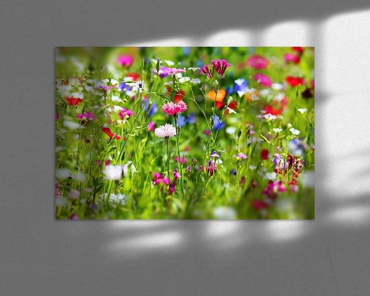 Beispiel: Blumenwiese von fotoping
