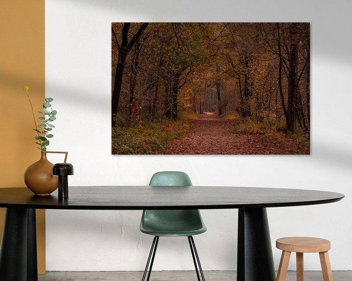 Sfeerimpressie: Herfstkleuren in het Mastbos van Ingrid Aanen