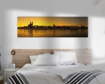 Magdeburg Panorama im Sonnenuntergang von Frank Herrmann