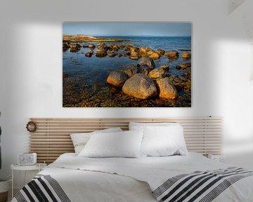 Kust van Schots eiland Arran - 1 van Adelheid Smitt
