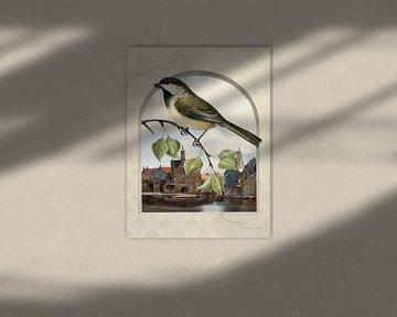 A Bird's-Eye View on Delft