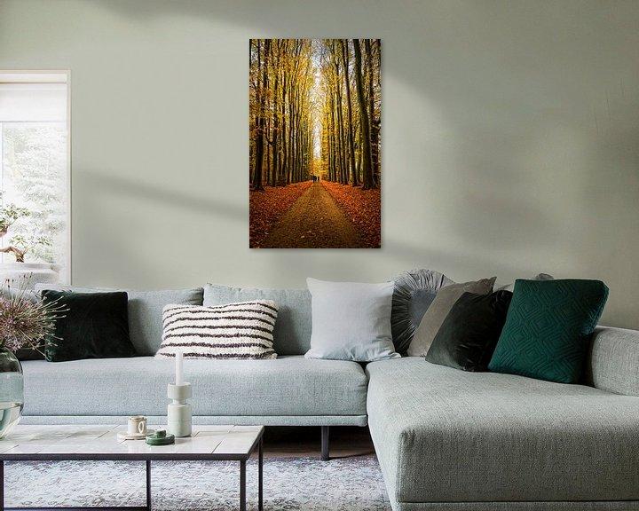 Sfeerimpressie: Herfst in het bos van Ipo Reinhold