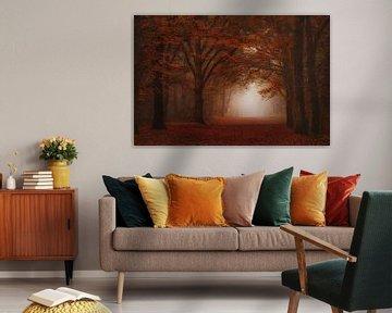Fluweel rood mistig bos . van Saskia Dingemans