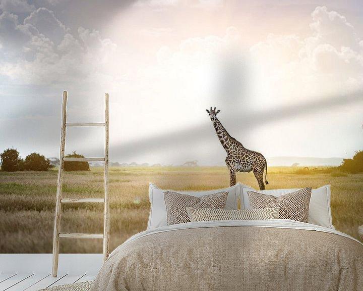 Beispiel fototapete: Massai Giraffe im Sonnenlicht von Alexander Schulz