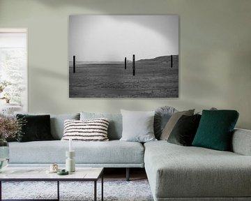Poteaux de plage noirs