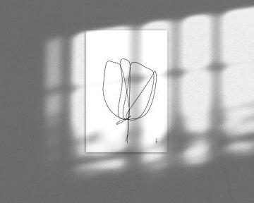 Tulpe von Ankie Kooi