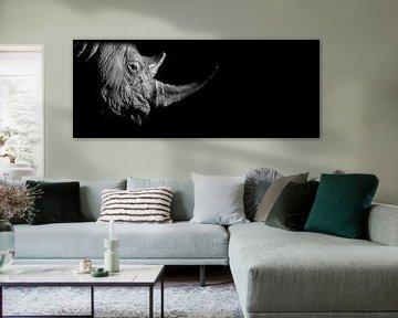 Neushoorn van EK Photography