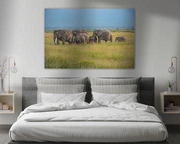 Elefantenherde im Ambroselli National Park von Alexander Schulz