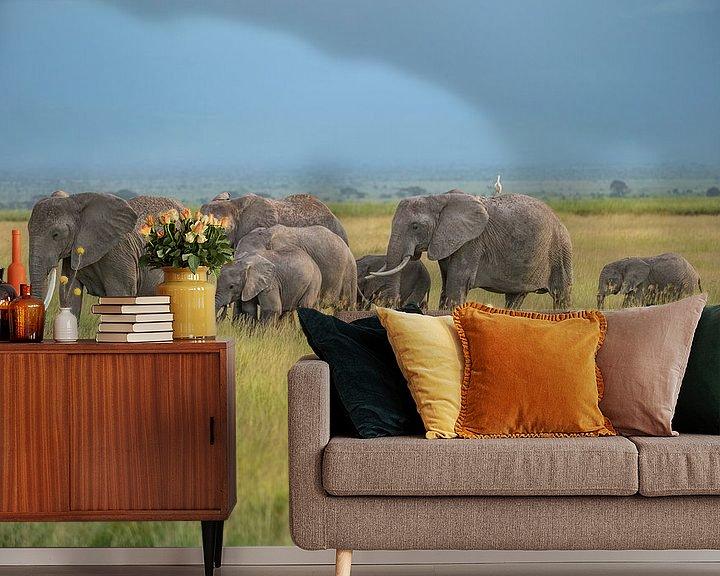 Beispiel fototapete: Elefantenherde im Ambroselli National Park von Alexander Schulz