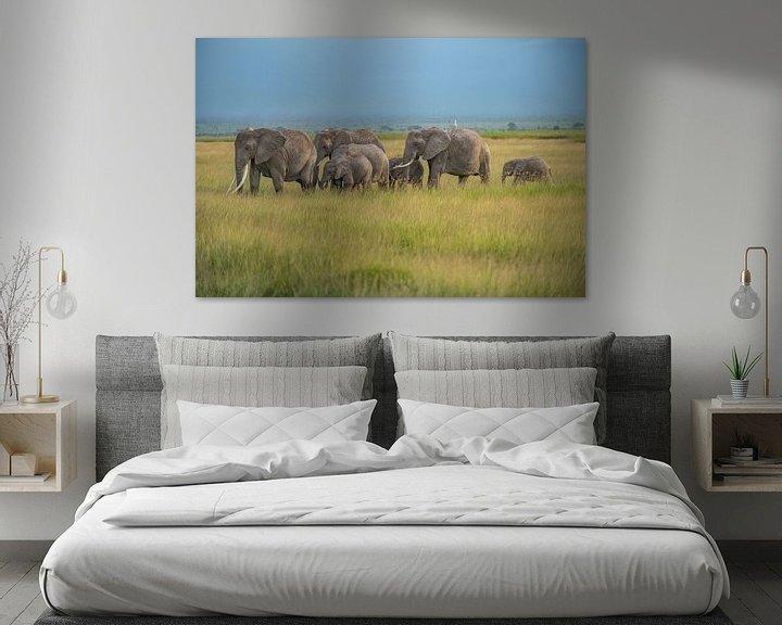 Beispiel: Elefantenherde im Ambroselli National Park von Alexander Schulz