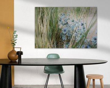 Blauwe zee distel en gras 01 van Lisenka l' Ami Fotografie