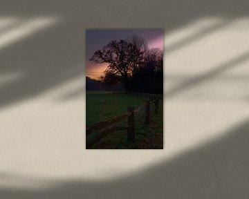 Zonsondergang Herfst in de Horsten