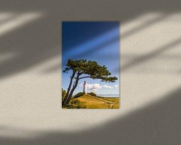 Vuurtoren Dornbusch op het eiland Hiddensee van Werner Dieterich