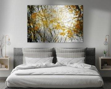 Gouden herfstbladeren als abstracte natuurachtergrond door meervoudige belichting, kopieerruimte van Maren Winter