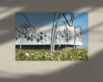 Wattenmeerzentrum Afsluitdijk bei Kornwerderzand von Fotografiecor .nl