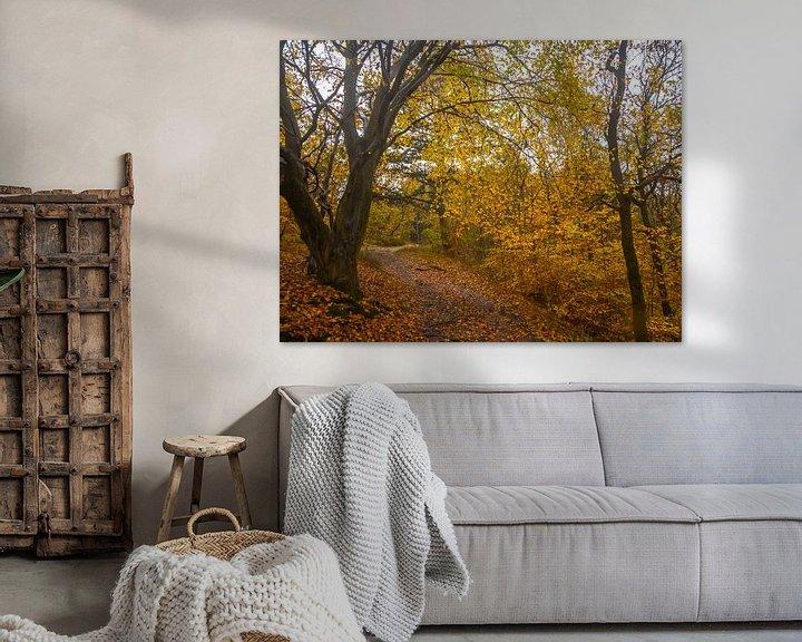 Beispiel: Herbstliche Farben im Wald von Martijn Tilroe