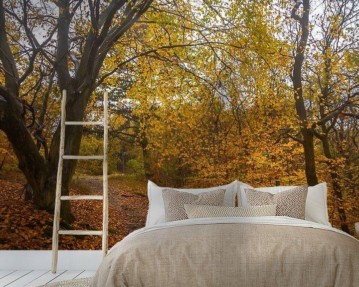 Beispiel fototapete: Herbstliche Farben im Wald von Martijn Tilroe
