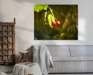 Wildbeeren von Wim van Berlo