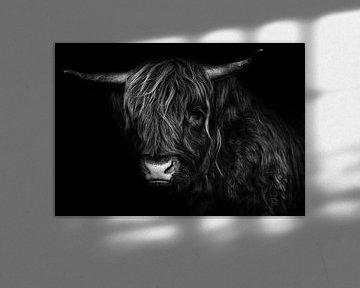 Schottischer Highlander schwarz-weiß von Bert Hooijer