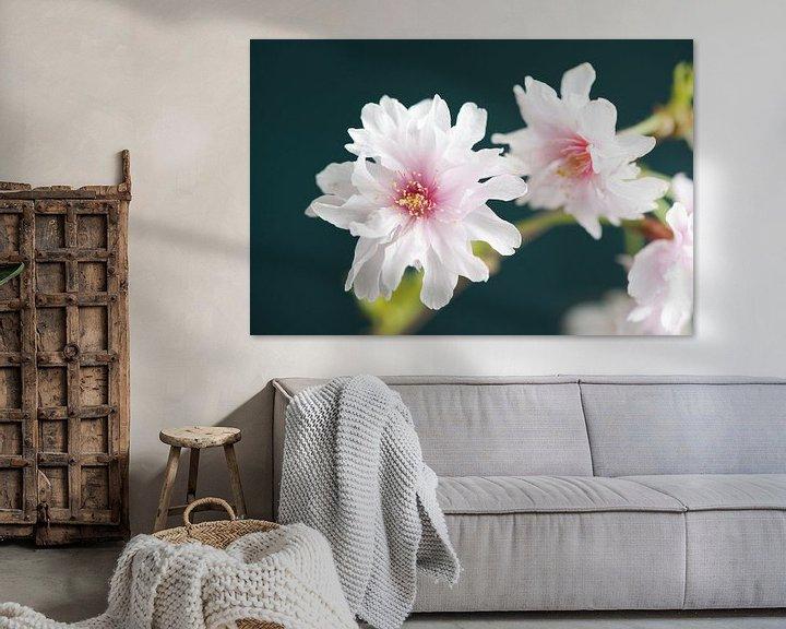 Sfeerimpressie: Sakura beauty van Remke Spijkers