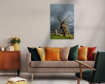 Mühlen auf der Insel Öland bei Lerkaka von Gerry van Roosmalen