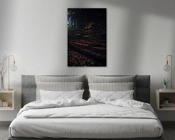 Kuss der Morgensonne von PhotoManiX Digital Photography