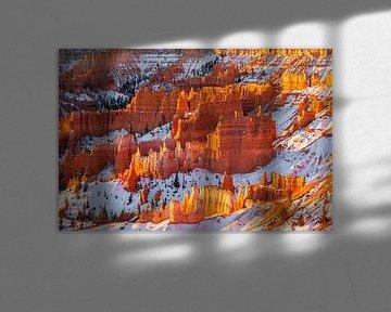 Winter zonsopkomst in Bryce Canyon N.P, Utah