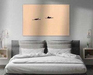 Kraanvogels in vlucht van Bert Kok