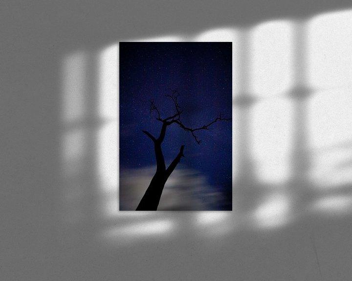 Sfeerimpressie: Nachtboom van joas wilzing