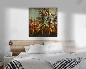 Bomen in het ochtendlicht van Dirk Wüstenhagen