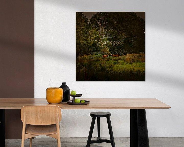 Sfeerimpressie: Hollands landschap in Drenthe met Schotse Hooglanders in de stijl van de oude meesters in de stijl v van ina kleiman