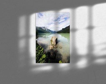 De rivieren van Alaska van Nathan Marcusse