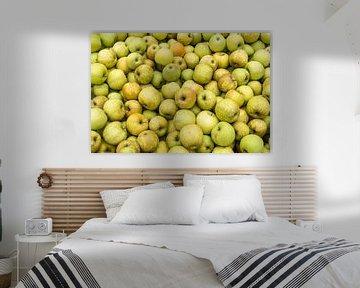 Appels van Daan Kloeg