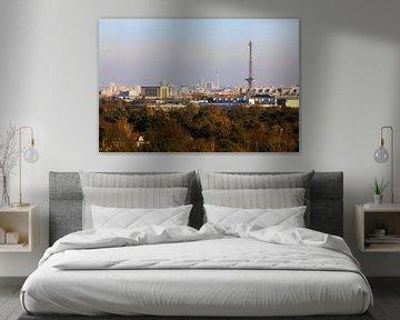 Berlin Skyline mit Funk- und Fernsehturm von Frank Herrmann