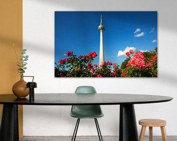 Fernsehturm Berlin mit Rosenbeet von Frank Herrmann
