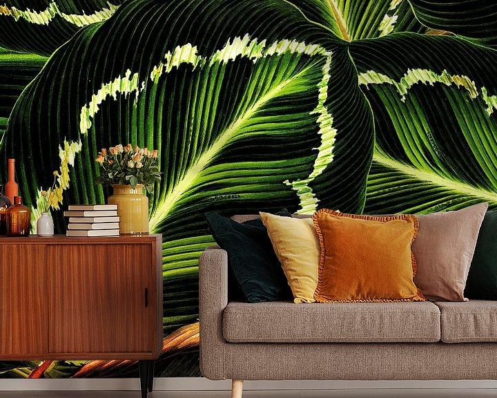 Beispiel fototapete: TROPICAL GREEN-GOLD LEAVES-1 von Pia Schneider