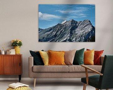 Ruige bergketen in Zwitserse alpen van FRNS