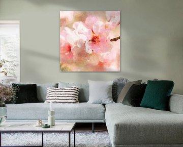 Cherry Blossom von Andreas Wemmje