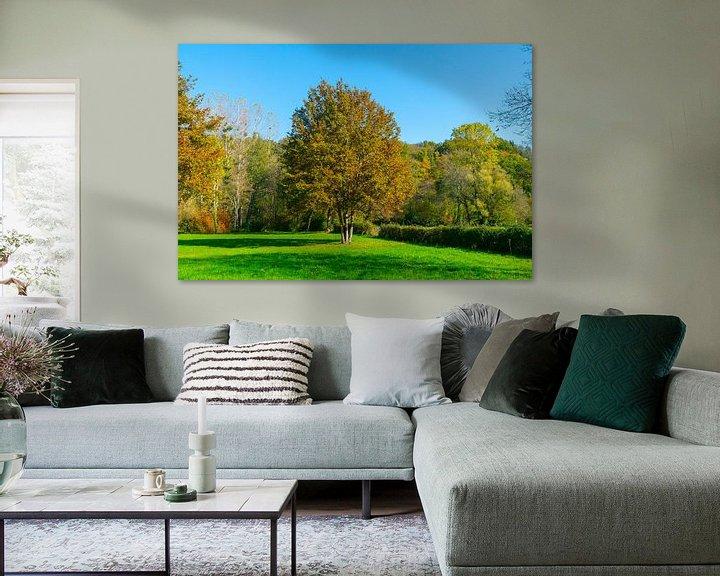 Beispiel: Bäume in einem Park auf einem Feld in Nordfrankreich von Ivo de Rooij