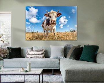 Nieuwsgierige koe van Dick van der Veer