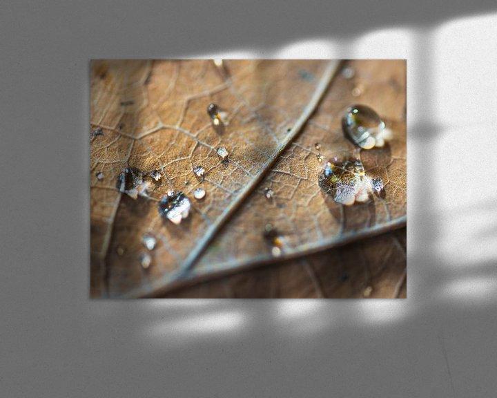 Sfeerimpressie: Herfstblad met waterdruppels van Anouschka Hendriks