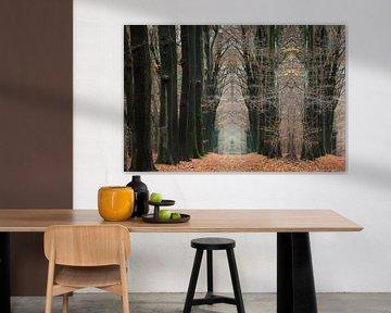 Laan met beukenbomen in een sprookjesbos in de herfst van Ger Beekes