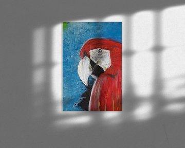 Zwei Papageien 2 von Susanne A. Pasquay