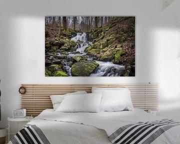 Wilde beukenstroom van Jürgen Schmittdiel Photography