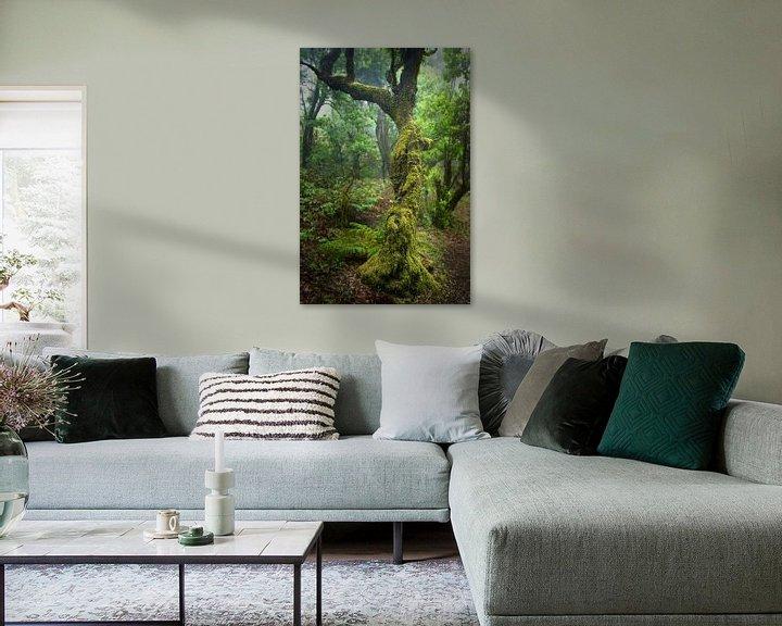 Beispiel: Regenwald von Andreas Kilian